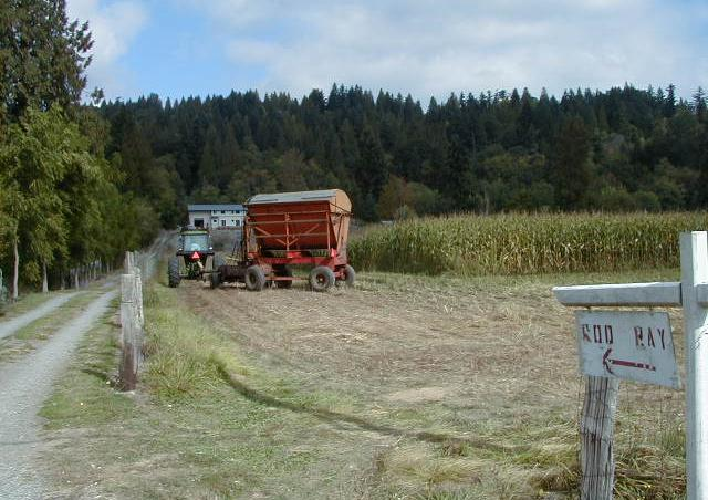 Agriculture is common in King County river valleys. Photo copyright King County.