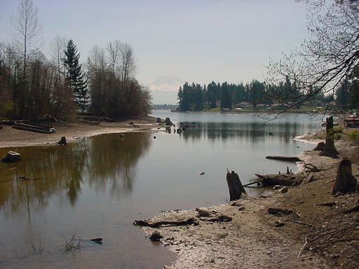 Lake Tapps, an artificially enlarged lake used as a reservoir in the White River watershed. Photo copyright King County.