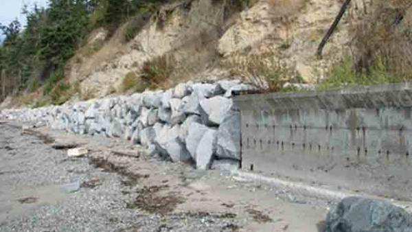 Former feeder bluff with sediment impounded by armoring. Photo by Hugh Shipman.