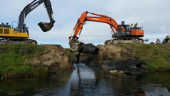 On August, 1, 2016, crews used large excavators to remove a 3,110 foot long marine dike. For the first time in 100 years, ocean water began to flow across 131 acres at Fir Island Farms estuary. Photo: WDFW