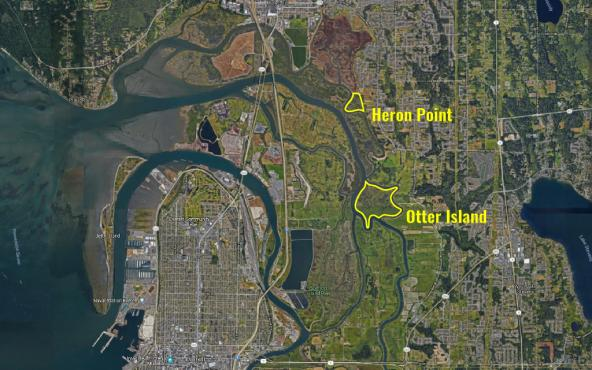 Aerial photo of Snohomish River delta showing outlines of Otter Island and Heron Point tidal forests. Annotated Google Map: Kris Symer/PSI