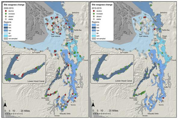 Left: Sites with clear trends in native seagrass area between 2000 and 2015. Right: Sites with clear trends in native seagrass area between 2010 and 2015. Source: WA DNR Puget Sound Seagrass Monitoring Report (2015)