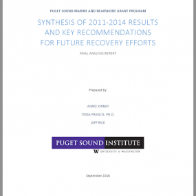 report cover: Synthesis of 2011-2014 results and key recommendations for future recovery efforts: Final analysis report