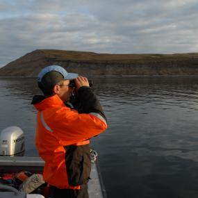 Peter Hodum, conservation biologist from the University of Puget Sound counts rhinoceros auklets and tufted puffins around Protection Island, WA (in the background). Photo: Scott Pearson, WDFW