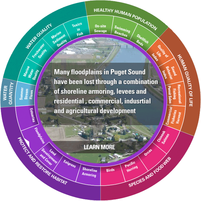 Vital Signs Wheel (Floodplains highlighted). Credit: Puget Sound Partnership